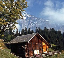 Autumn in Grindelwald, Switzerland #1 by David J Dionne