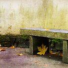 Leaf Zen by Rebecca Cozart