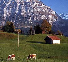 Autumn in Grindelwald, Switzerland #5 by David J Dionne