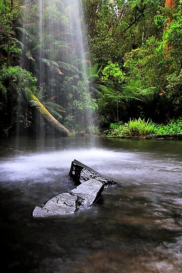 Natural Shower by Stephen Ruane
