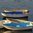 Dinghy Boats by Monica M. Scanlan