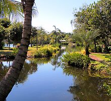 Naples Zoo Scenic by Rosalie Scanlon