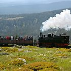Train climbing the &quot;Brocken&quot; in former East Germany. by David A. L. Davies