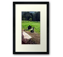 Just having a Rest! Framed Print