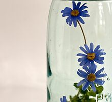 flowers in a jar by suzdehne