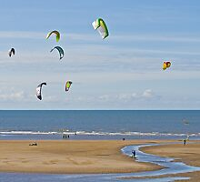 Go Fly a Kite by Peter Stone