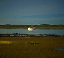 tidal. old fishing boat, anderson inlet, victoria by tim buckley | bodhiimages