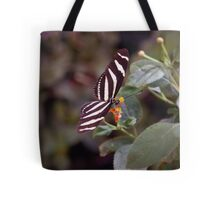 Heliconius Charithonius (Zebra Longwing) Butterfly Tote Bag