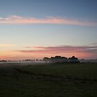 Morning Mist near Casino by Odille Esmonde-Morgan