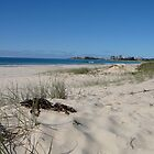 Coolangatta from North Kirra Beach by aussiebushstick