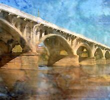 Spanning the Congaree by suzannem73