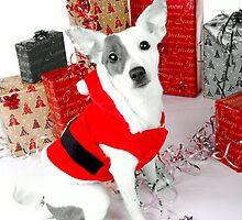 Coco Christmas by claraneva