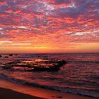 Sunrise Mona vale Beach by Doug Cliff