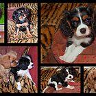 Puppy Collage by AnnDixon