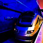 Gautrain - High Speed Train Travel in Africa by RatManDude