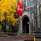 Fall colors,Temple university, Philadelphia by electron
