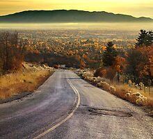 Autumn Road - Dry Fork Canyon, Alpine, Utah by Ryan Houston