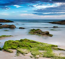 Anna Bay Afternoon 2 by Michael Howard