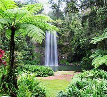 Millaa Millaa Falls by Linda Lees