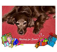 Waiting for Santa by Barb Miller