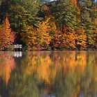 Reflections by William Guilmette