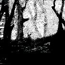 the fuckin forest from the trees - a pastoral in black white and grey 1 by mhkantor