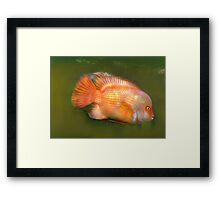 Jaws in Charge Framed Print
