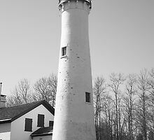 Lighthouse - Sturgeon Point, Michigan by Frank Romeo