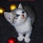 Christmas Kitty by Kristina K