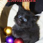 Kitty Christmas by Kristina K