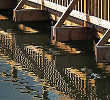 Reflections of a wooden bridge, Slimbridge, Gloucester, UK by buttonpresser