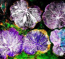 "Novembers Garden 7 - Monoprint by Belinda ""BillyLee"" NYE (Printmaker)"
