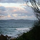 Montague Island at Dusk by aussiebushstick