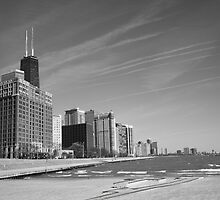 Chicago Skyline and Beach by Frank Romeo