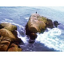 on the rocky shore you will find her.. still waiting for his return Photographic Print