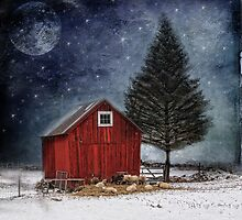 all is calm, all is bright... by dawne polis