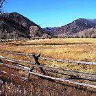 Wyoming Ranch, USA by Wayne George