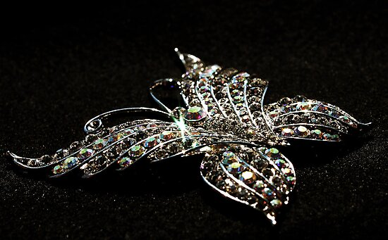 Crystal Butterfly by Evita