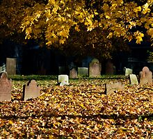Old Town Cemetery on a Late Autumn Afternoon by Sandra Dunlap