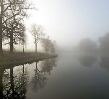 Foggy Morning in the Cotswolds by MarkBigelow