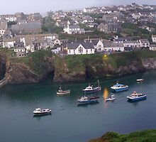 Panorama of Port Isaac by M G  Pettett