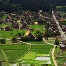 Shirakawa-go Green by Skye Hohmann
