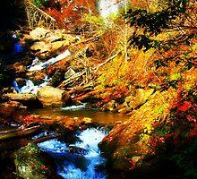 Anna Ruby Falls  by Chelei