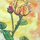 """Golden Celebration"" a David Austin Rose by Alexandra Felgate"