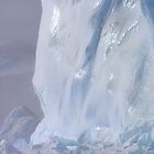 Emperor Penguins &amp; Iceberg by Steve Bulford