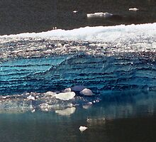 Blue Ice in Tracy Arm Fjord - Closer by Goudy