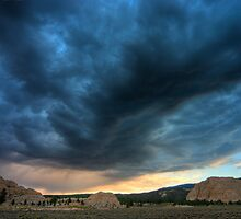 Brooding by Clayhaus