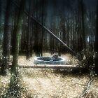 Fear is hidden in the woods. by Bonus