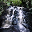 Yarra Creek Falls by Karen Scrimes