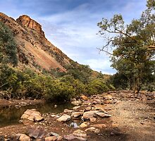 Mount Chambers Creek - Mount Chambers Gorge, South Australia by Jeff Catford